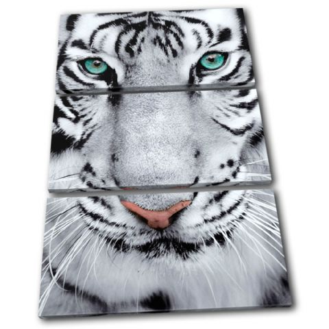 Tiger Wildlife Animals - 13-1650(00B)-TR32-PO